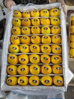 Лимон первый сорт (Турция) 5см, 5кг/шт