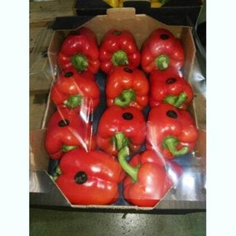 Перец красный сладкий (болгарский) (Иран) (сорт Калифорния), 200гр, 1,8-2,2кг/шт