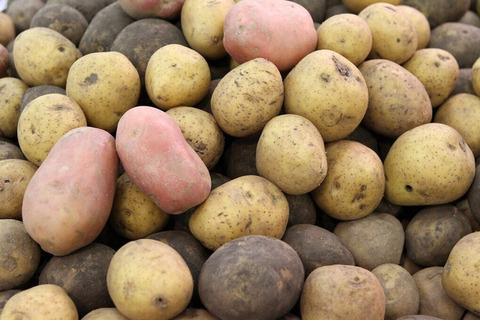 Закупаю картофель