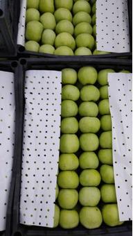 Яблоки (Сербия) Гренни Смит 6-7см 20кг/шт