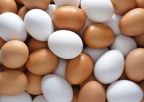 Купим дорого яйцо. Опт.